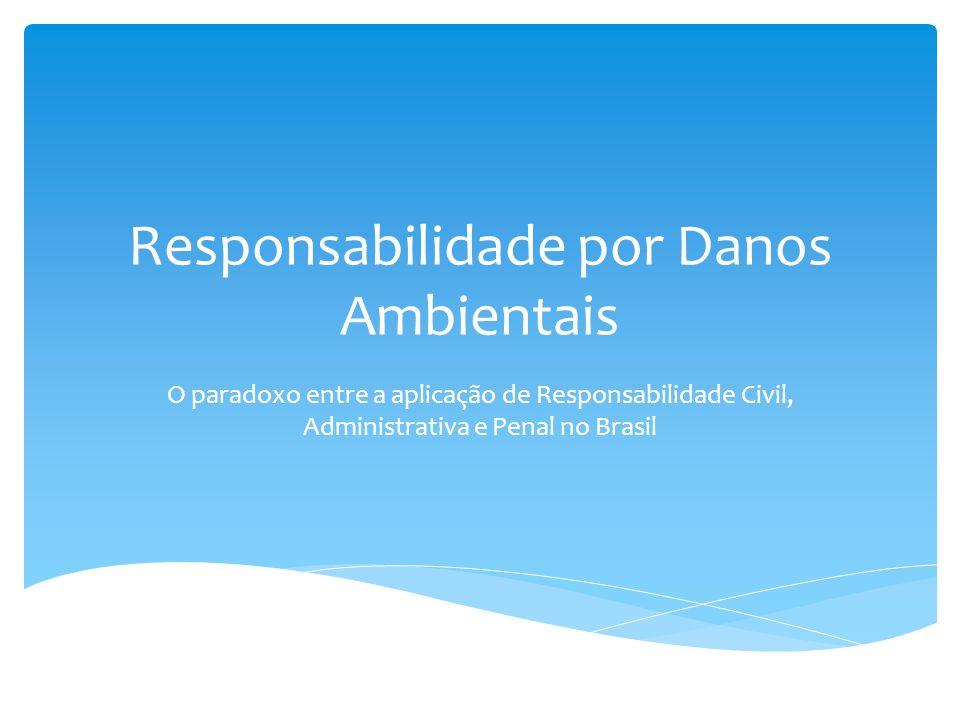 Responsabilidade por Danos Ambientais
