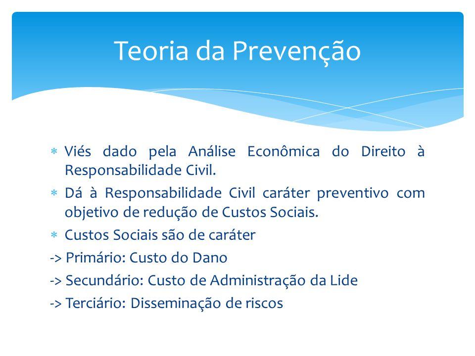 Teoria da Prevenção Viés dado pela Análise Econômica do Direito à Responsabilidade Civil.