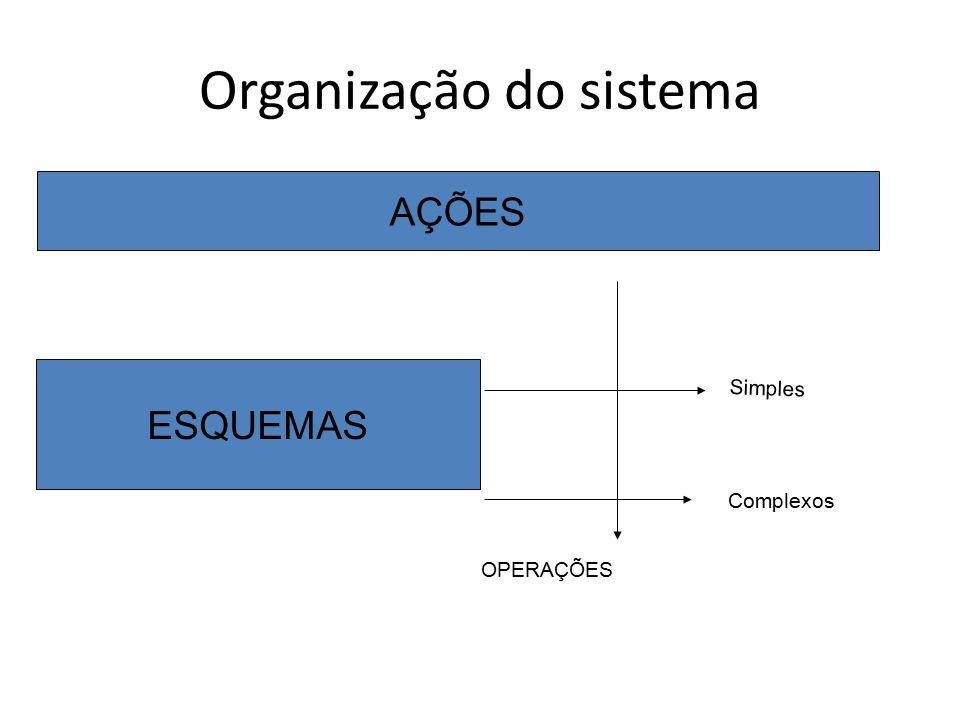 Organização do sistema