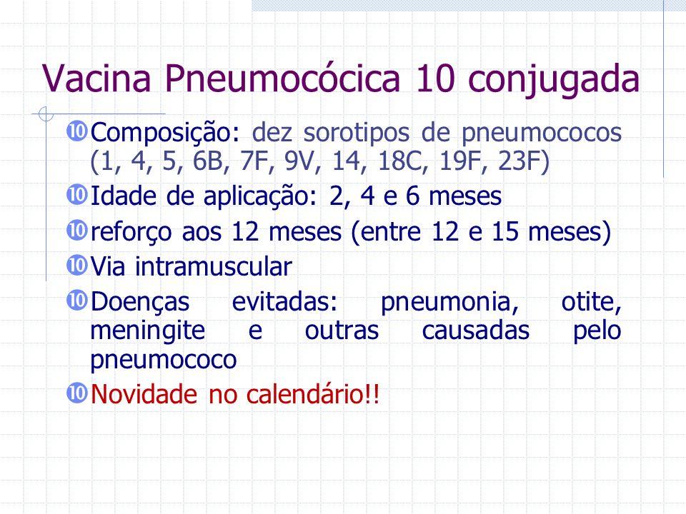 Vacina Pneumocócica 10 conjugada