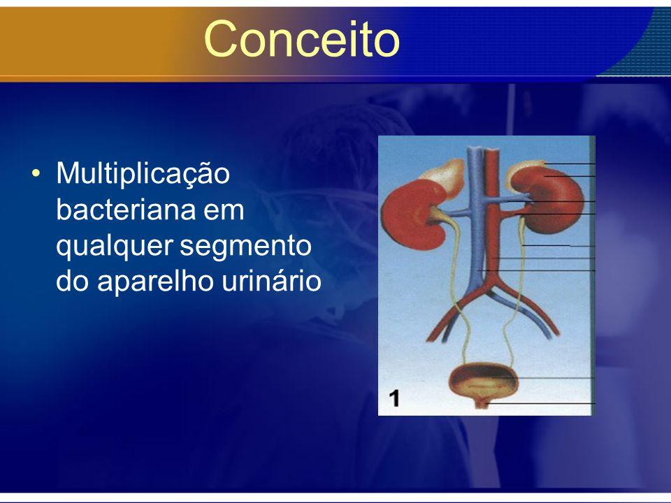 Conceito Multiplicação bacteriana em qualquer segmento do aparelho urinário
