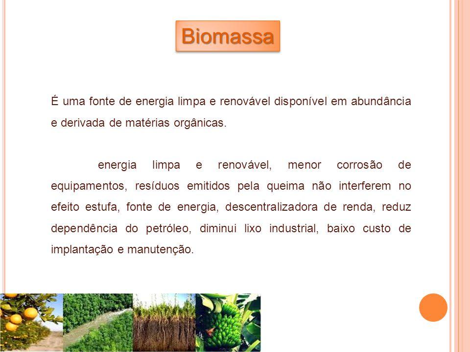 Biomassa É uma fonte de energia limpa e renovável disponível em abundância e derivada de matérias orgânicas.