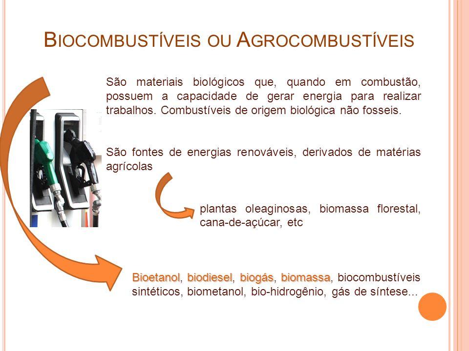 Biocombustíveis ou Agrocombustíveis