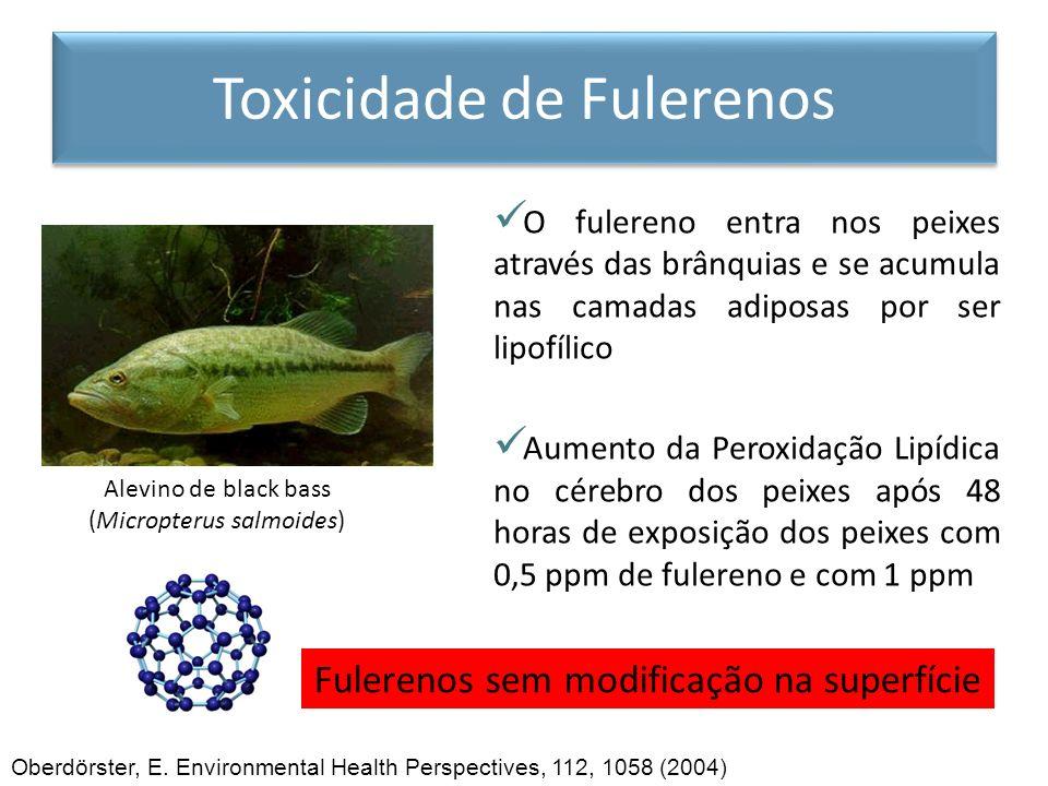 Toxicidade de Fulerenos
