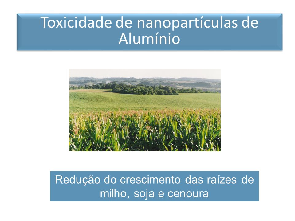 Toxicidade de nanopartículas de Alumínio