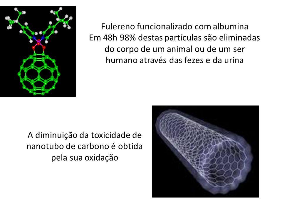 Fulereno funcionalizado com albumina
