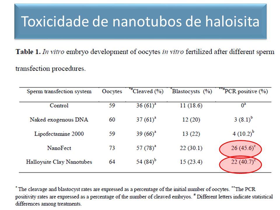 Toxicidade de nanotubos de haloisita