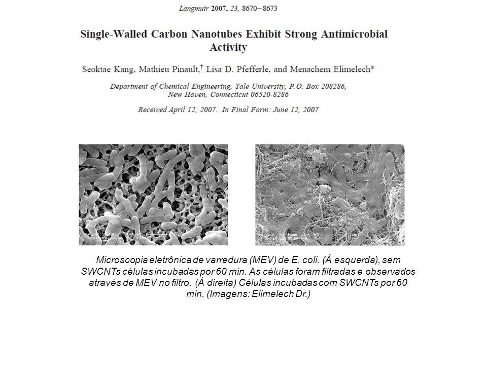 Toxicidade nanotubos