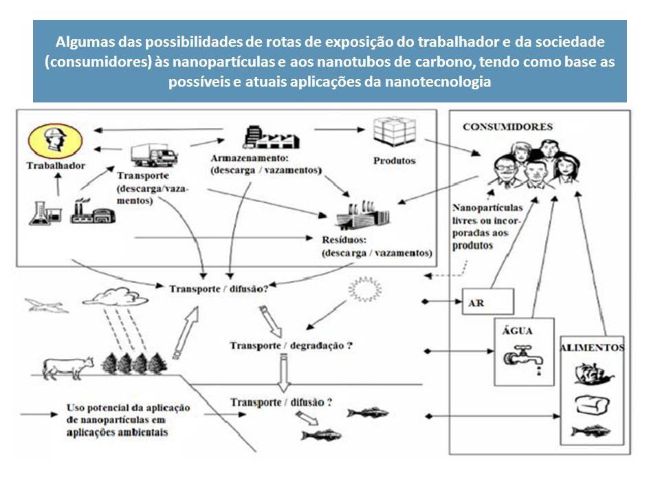 Algumas das possibilidades de rotas de exposição do trabalhador e da sociedade (consumidores) às nanopartículas e aos nanotubos de carbono, tendo como base as possíveis e atuais aplicações da nanotecnologia