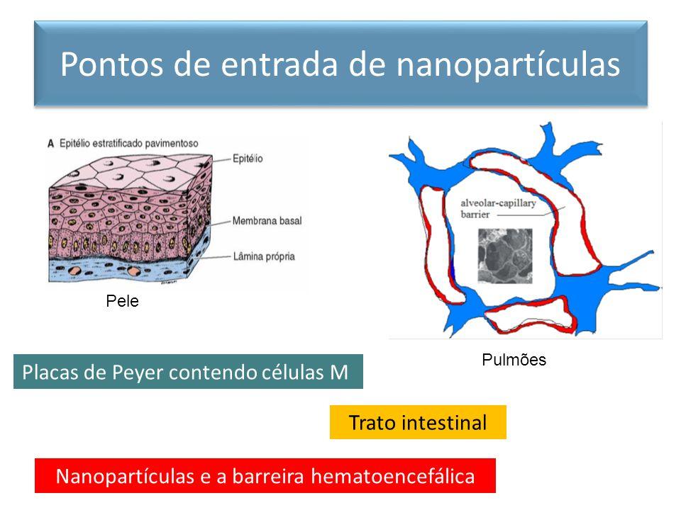 Pontos de entrada de nanopartículas