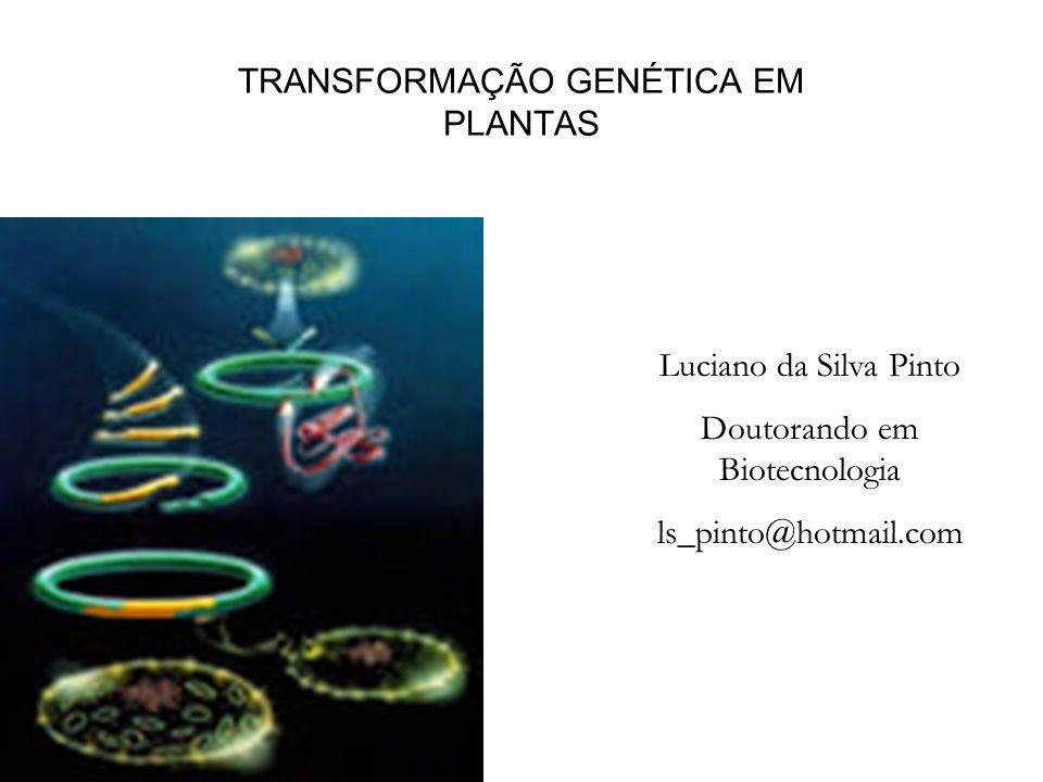 TRANSFORMAÇÃO GENÉTICA EM PLANTAS
