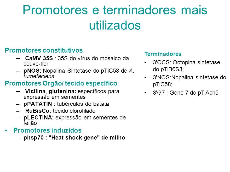 Promotores e terminadores mais utilizados
