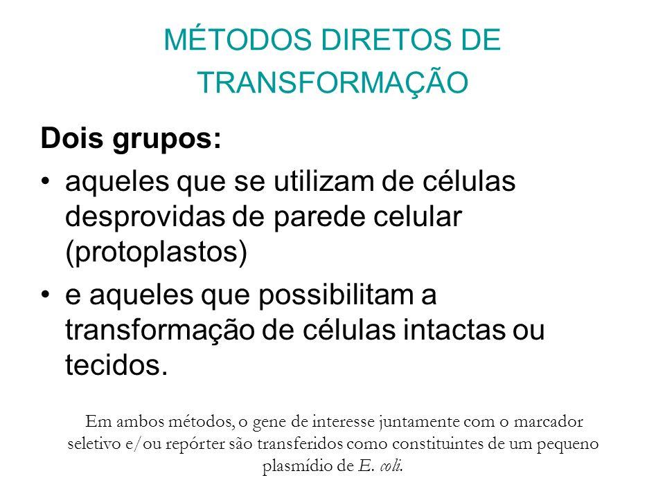 MÉTODOS DIRETOS DE TRANSFORMAÇÃO