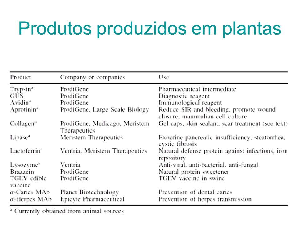 Produtos produzidos em plantas