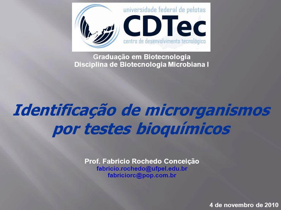 Identificação de microrganismos por testes bioquímicos