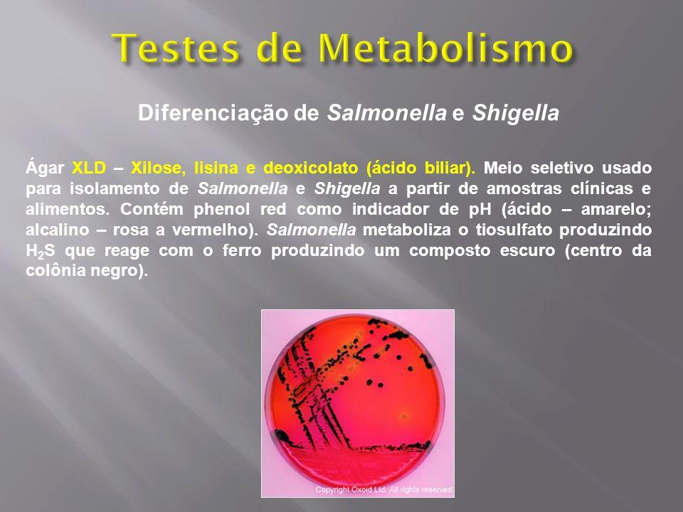 Diferenciação de Salmonella e Shigella