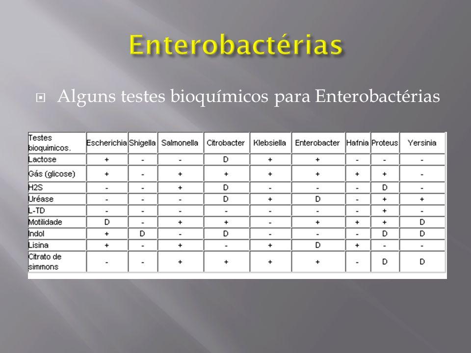 Enterobactérias Alguns testes bioquímicos para Enterobactérias