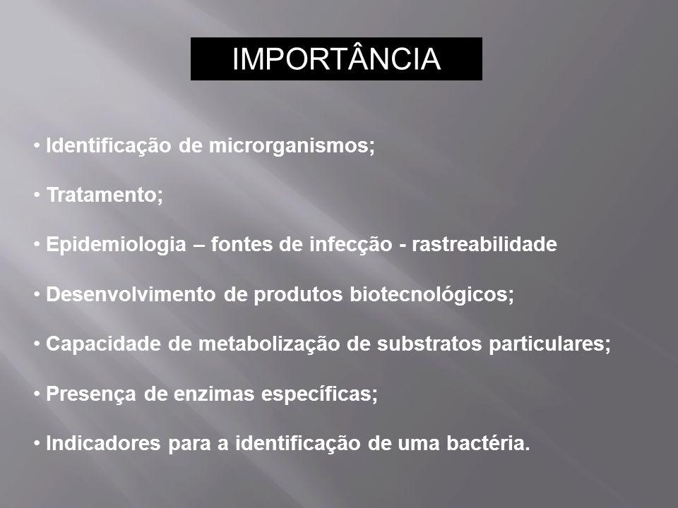 IMPORTÂNCIA Identificação de microrganismos; Tratamento;