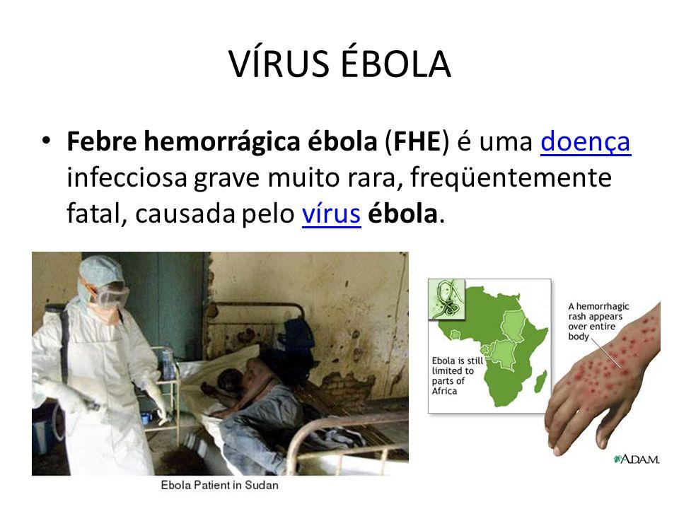 VÍRUS ÉBOLA Febre hemorrágica ébola (FHE) é uma doença infecciosa grave muito rara, freqüentemente fatal, causada pelo vírus ébola.