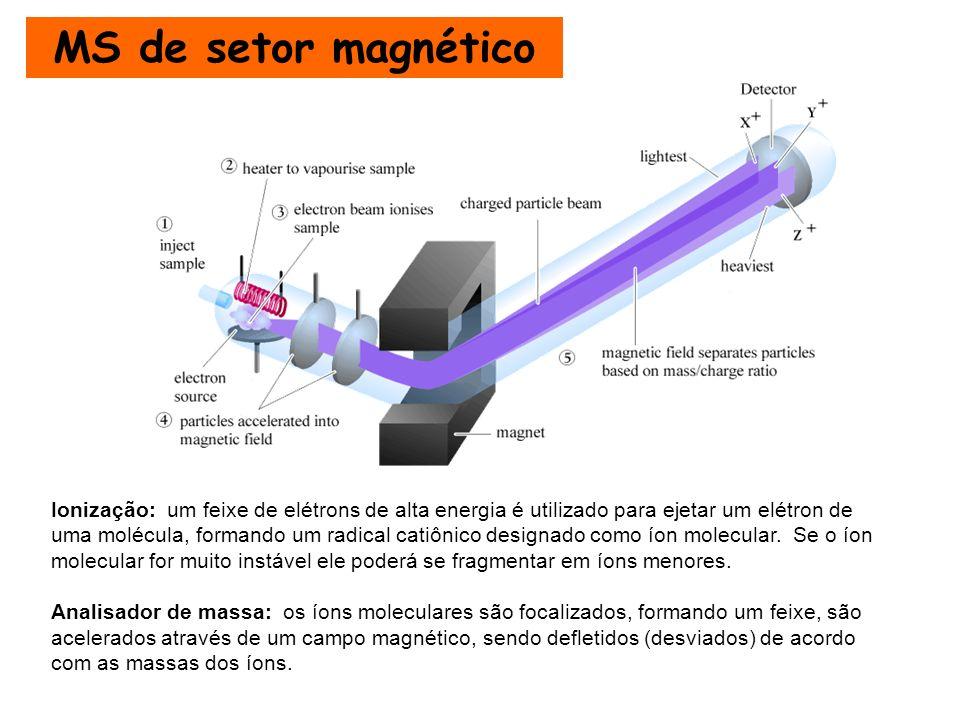 MS de setor magnético