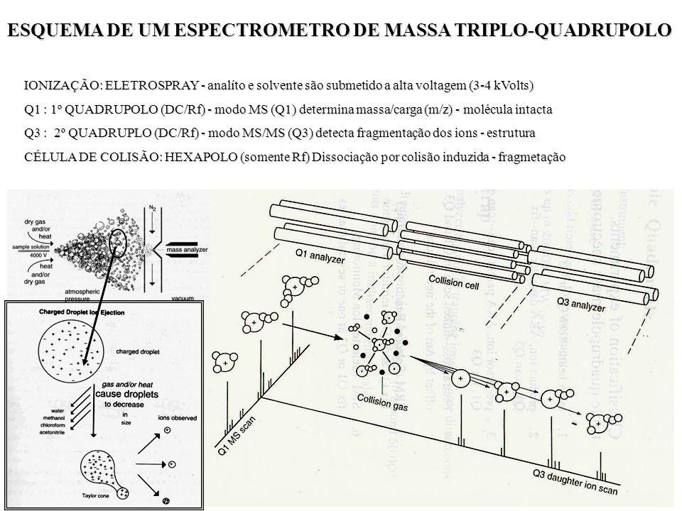 ESQUEMA DE UM ESPECTROMETRO DE MASSA TRIPLO-QUADRUPOLO