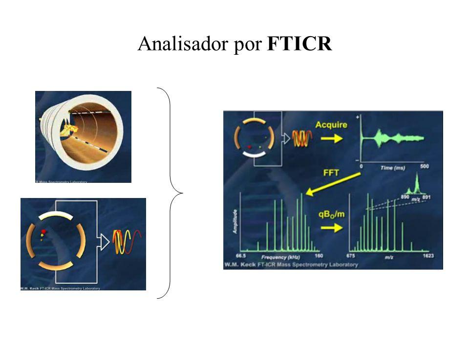 Analisador por FTICR