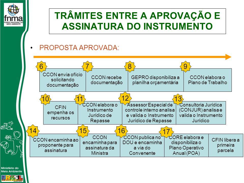 TRÂMITES ENTRE A APROVAÇÃO E ASSINATURA DO INSTRUMENTO