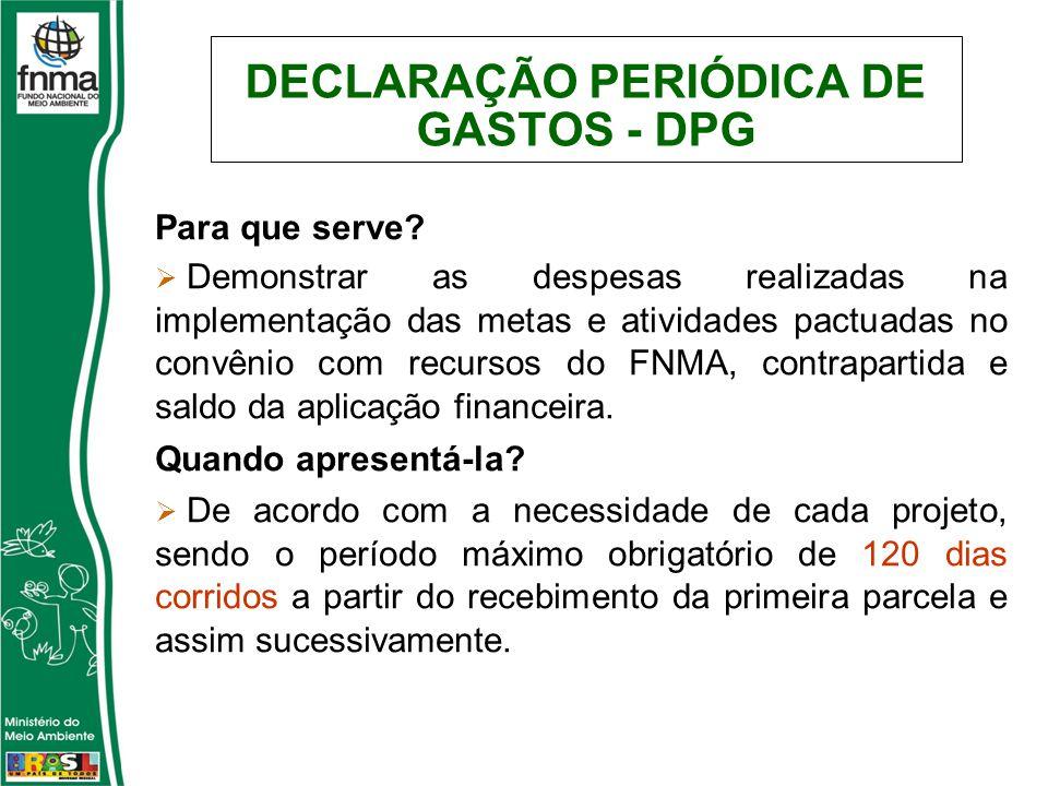 DECLARAÇÃO PERIÓDICA DE GASTOS - DPG