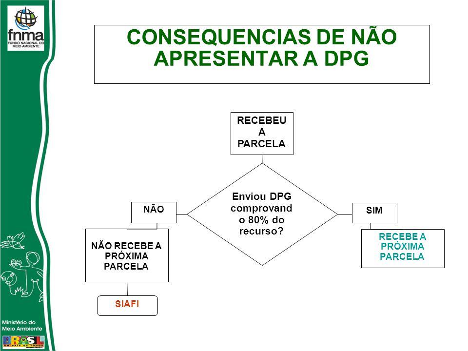 CONSEQUENCIAS DE NÃO APRESENTAR A DPG