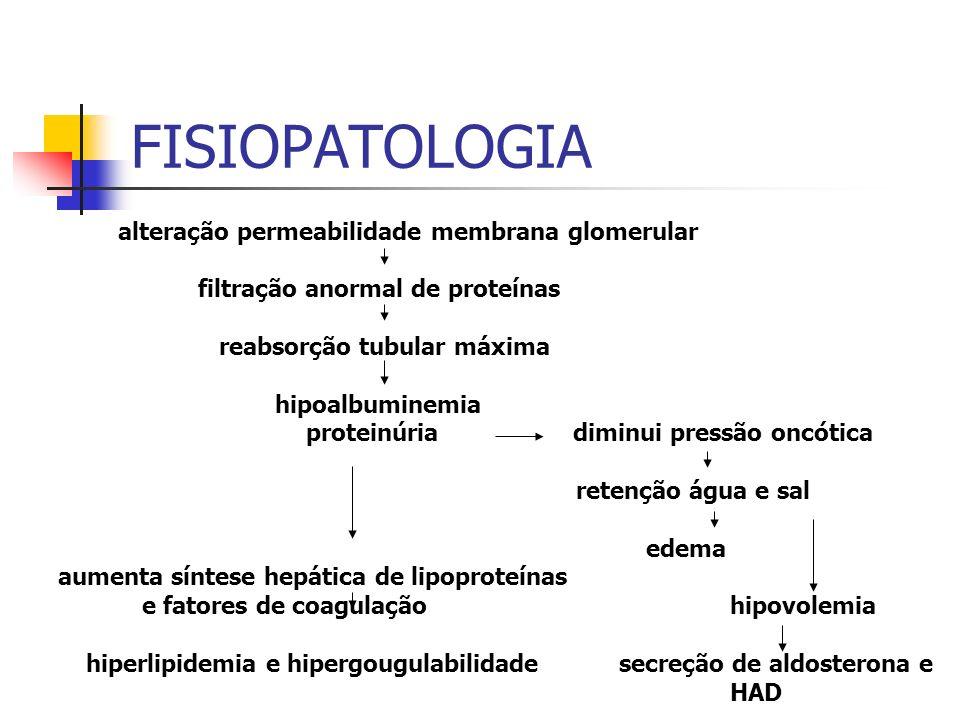 FISIOPATOLOGIA alteração permeabilidade membrana glomerular