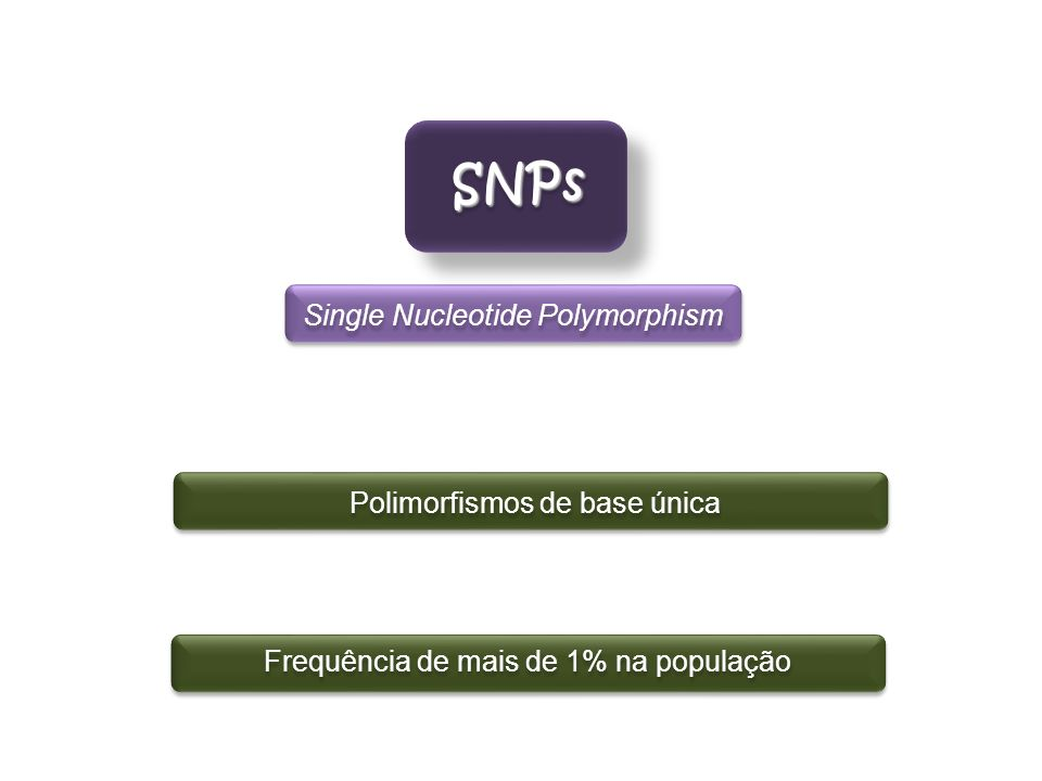 SNPs Single Nucleotide Polymorphism Polimorfismos de base única