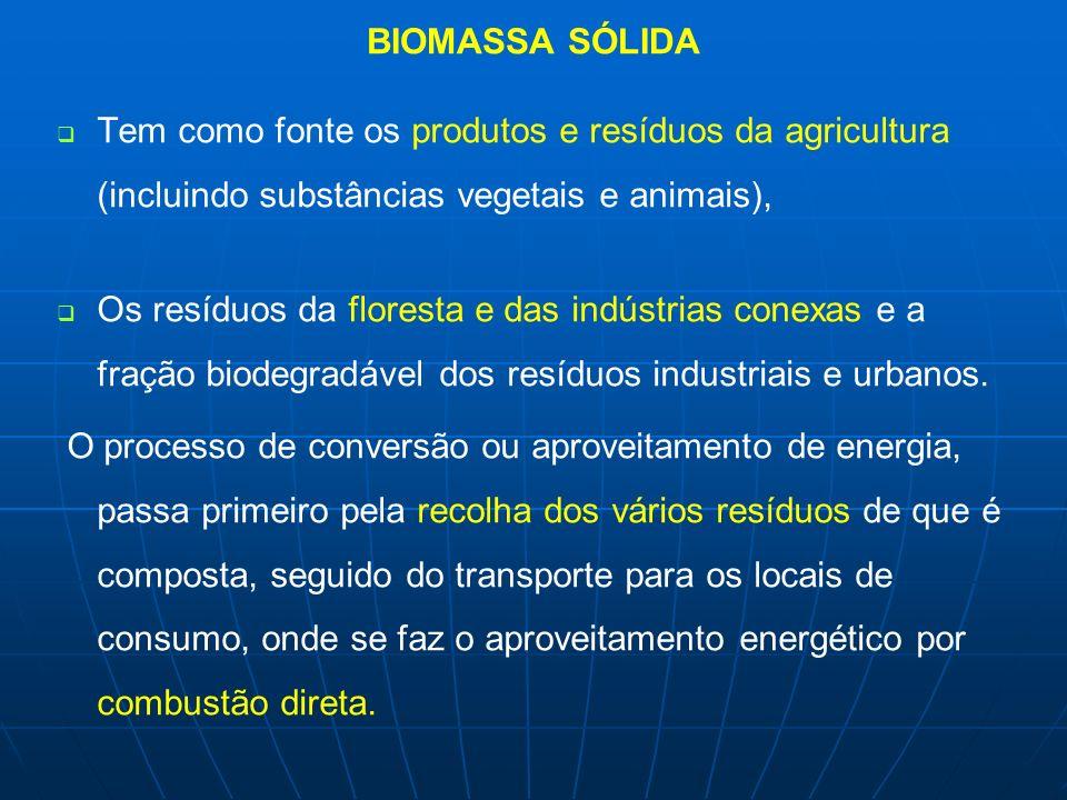 BIOMASSA SÓLIDA Tem como fonte os produtos e resíduos da agricultura (incluindo substâncias vegetais e animais),