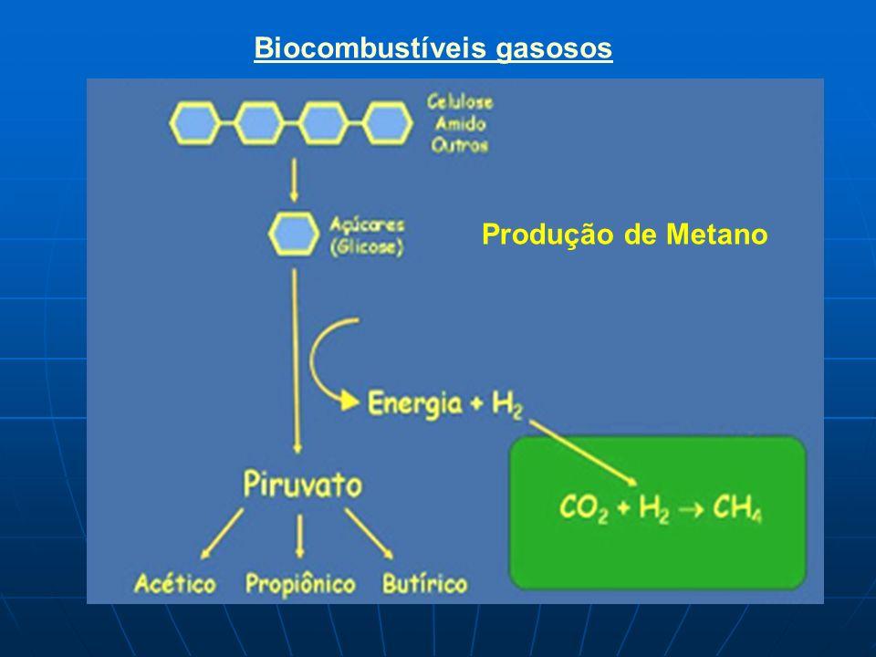 Biocombustíveis gasosos