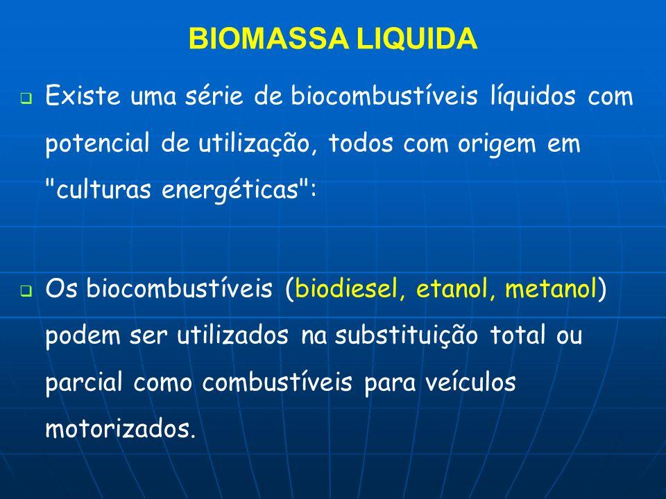 BIOMASSA LIQUIDA Existe uma série de biocombustíveis líquidos com potencial de utilização, todos com origem em culturas energéticas :