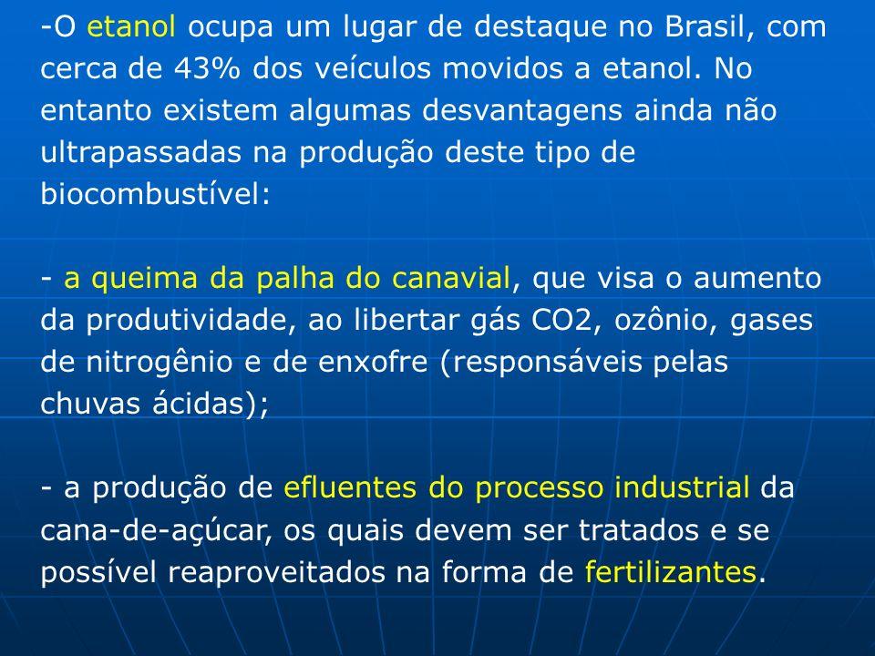 O etanol ocupa um lugar de destaque no Brasil, com cerca de 43% dos veículos movidos a etanol. No entanto existem algumas desvantagens ainda não ultrapassadas na produção deste tipo de biocombustível: - a queima da palha do canavial, que visa o aumento da produtividade, ao libertar gás CO2, ozônio, gases de nitrogênio e de enxofre (responsáveis pelas chuvas ácidas);