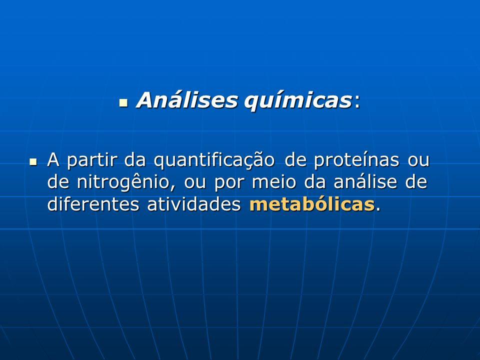 Análises químicas:A partir da quantificação de proteínas ou de nitrogênio, ou por meio da análise de diferentes atividades metabólicas.