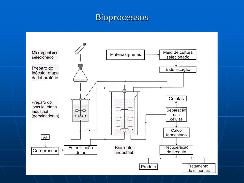 Bioprocessos