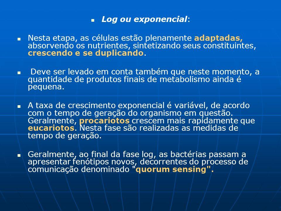 Log ou exponencial: