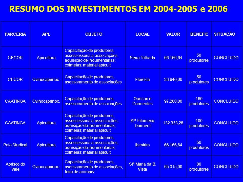 RESUMO DOS INVESTIMENTOS EM 2004-2005 e 2006