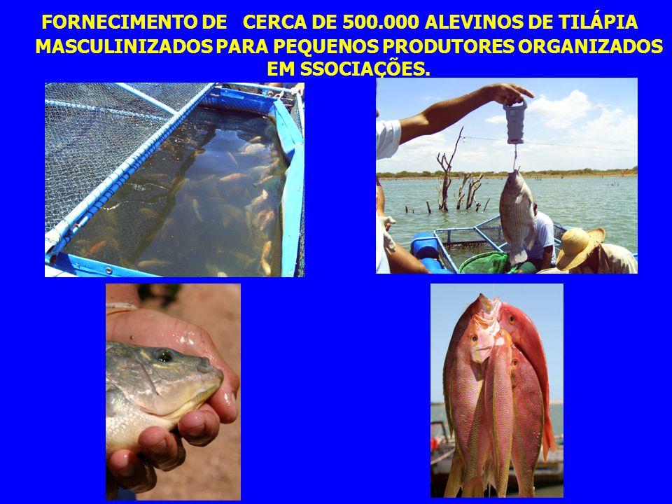 FORNECIMENTO DE CERCA DE 500