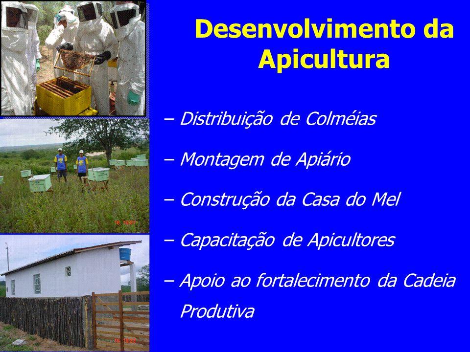 Desenvolvimento da Apicultura