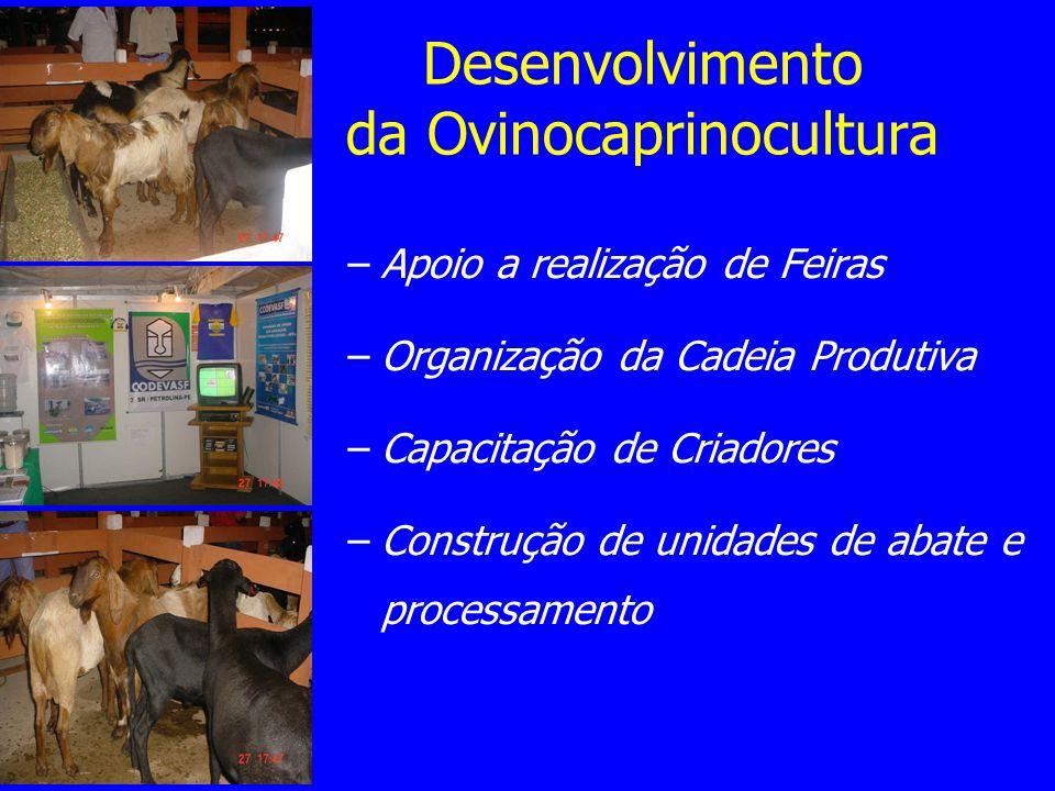 Desenvolvimento da Ovinocaprinocultura