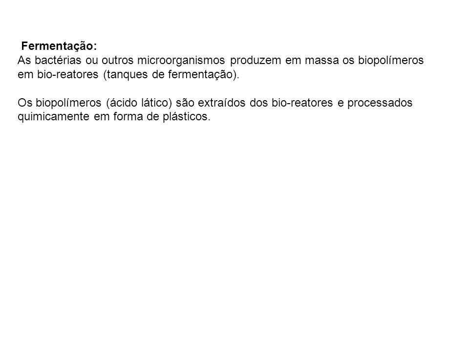 Fermentação:As bactérias ou outros microorganismos produzem em massa os biopolímeros em bio-reatores (tanques de fermentação).