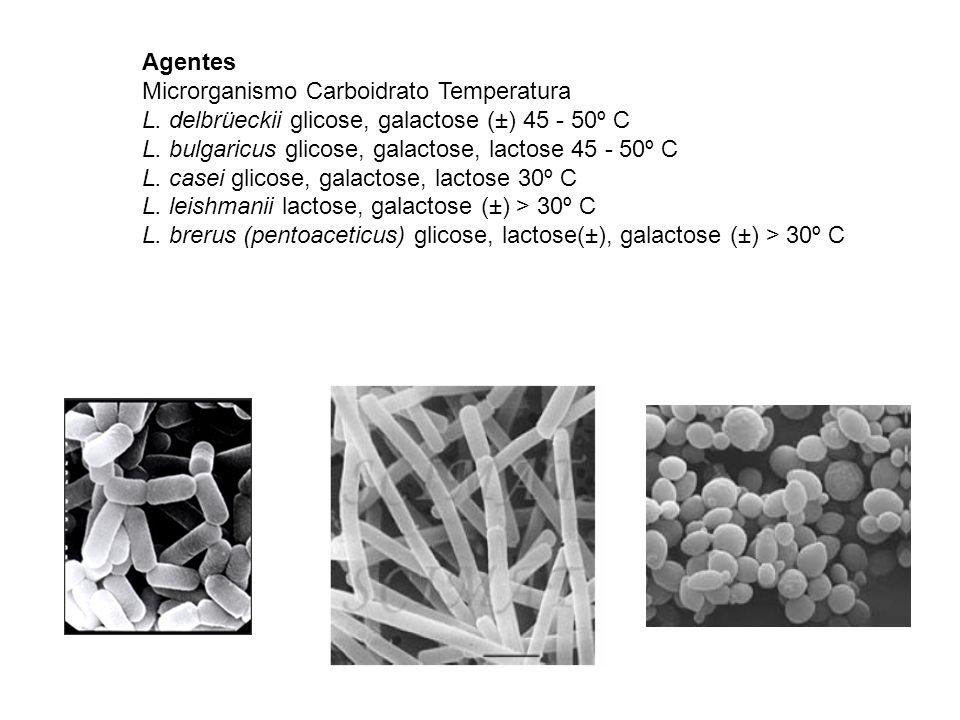 AgentesMicrorganismo Carboidrato Temperatura. L. delbrüeckii glicose, galactose (±) 45 - 50º C. L. bulgaricus glicose, galactose, lactose 45 - 50º C.