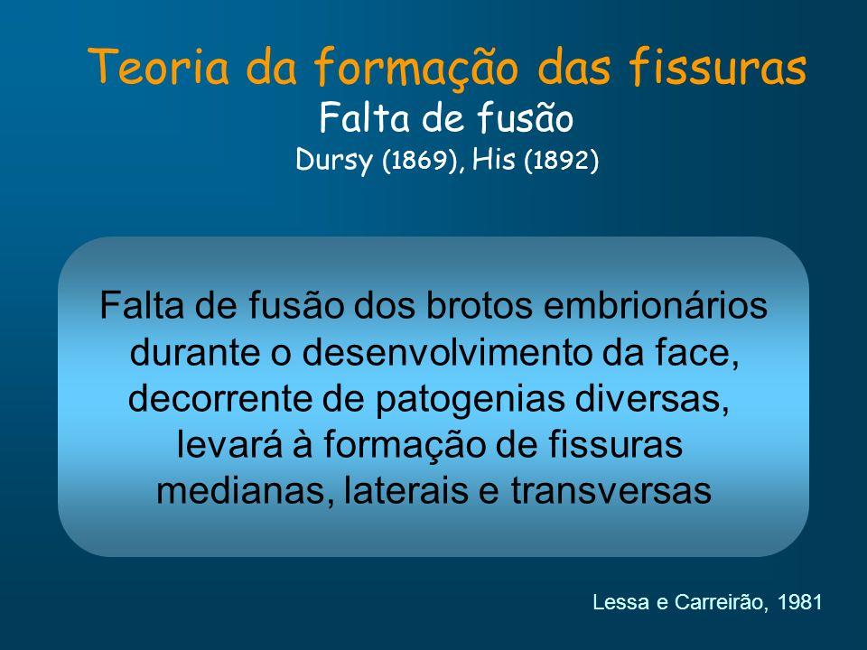 Teoria da formação das fissuras Falta de fusão Dursy (1869), His (1892)