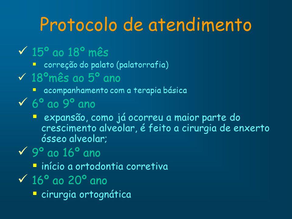 Protocolo de atendimento