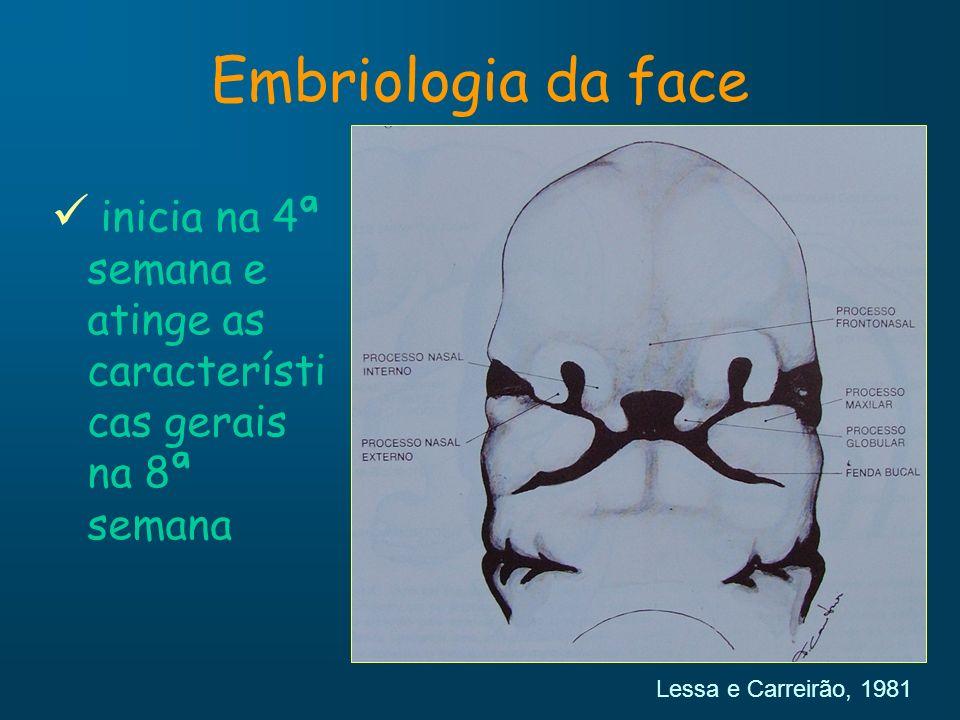 Embriologia da face inicia na 4ª semana e atinge as características gerais na 8ª semana.