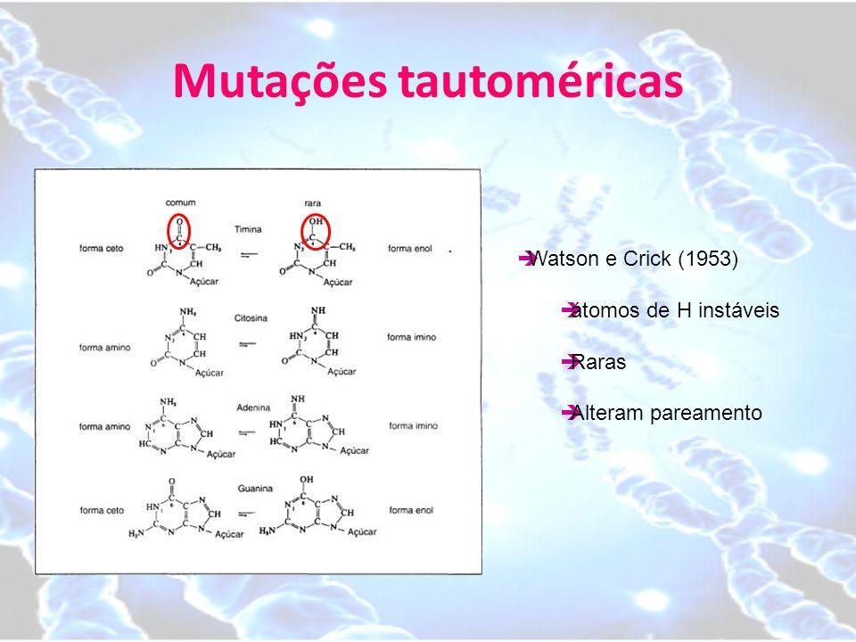 Mutações tautoméricas