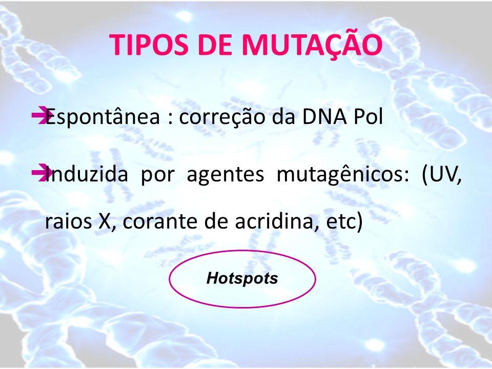 TIPOS DE MUTAÇÃO Espontânea : correção da DNA Pol
