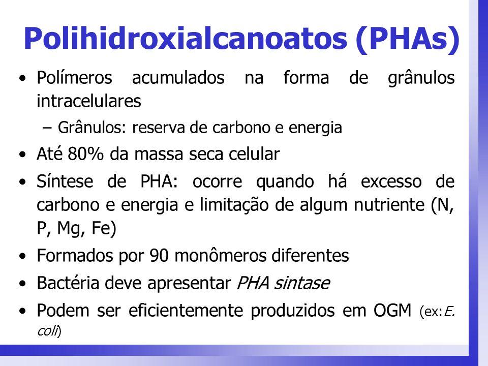 Polihidroxialcanoatos (PHAs)